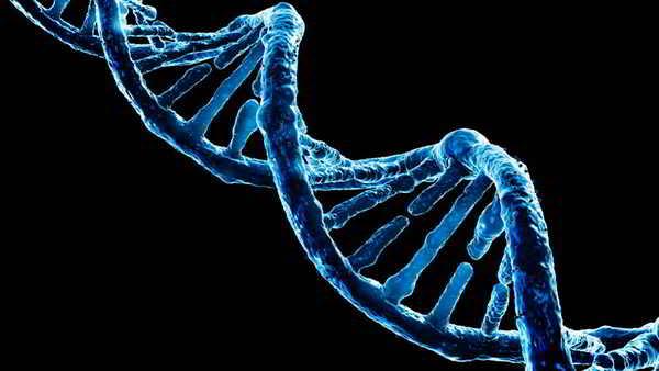 Hilo de DNA
